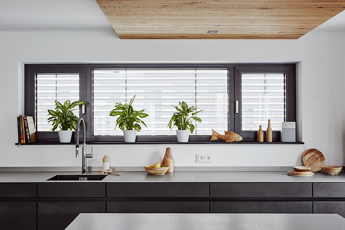 modern living, kitchen, wood, wooden table ware, plants, living with plants, black and white, wooden ceiling