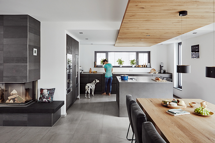 modern living, kitchen, wood, modern design, open space, geometric, wooden ceiling, living with dogs, familiy, dogs, black and white, plants