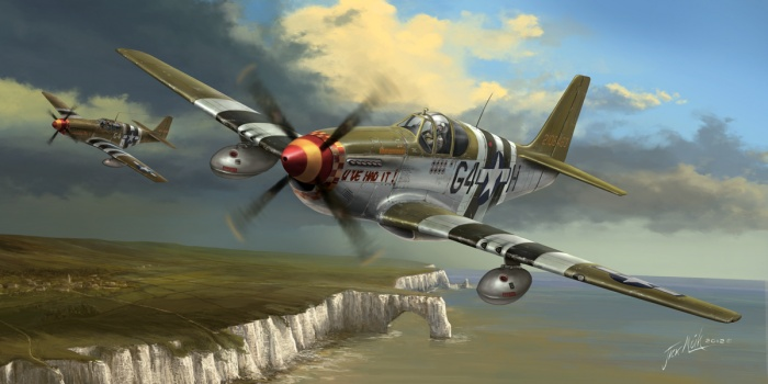 The Mustang was always one of of my favorite warbirds of all time. I think the