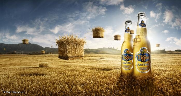 Photographer: © Mat Blamires